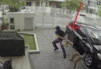 Woman Fights mugger