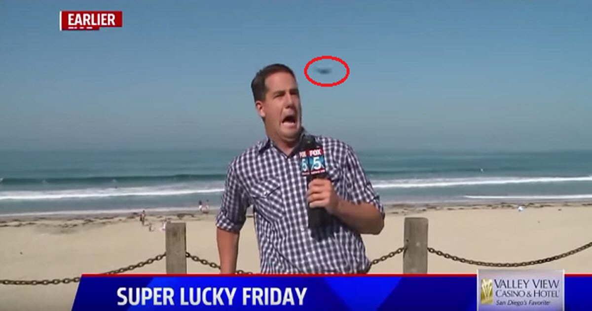 funny news reporter video